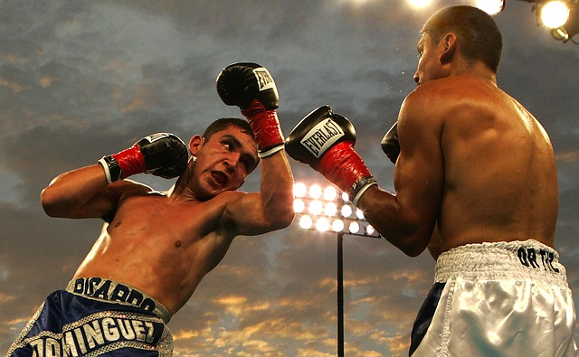 boxeři v ringu